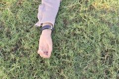 Левая рука дамы на траве Стоковое Фото