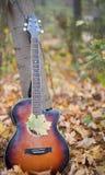 Левая сторона за гитарой Стоковые Изображения RF