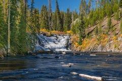 Левис падает национальный парк Йеллоустона Стоковое Фото
