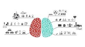 Левый и правый мозг действует значок иллюстрация штока