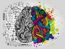 Левый и правый человеческий мозг Творческая половина и половина логики человеческого разума также вектор иллюстрации притяжки cor иллюстрация вектора