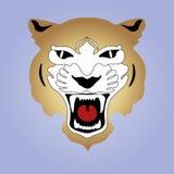 Лев в изображении, царь природы! Стоковые Фото