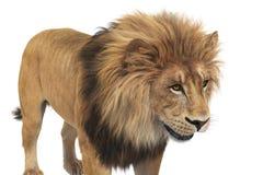 Лев животный бежевый leo, близкий взгляд бесплатная иллюстрация