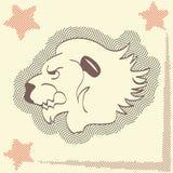 Лев значка головной, желтая предпосылка с звездами Красивый хищник, король зверей, различное применение Стоковые Изображения