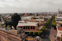 Лев попечителя стоковое фото rf
