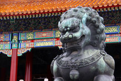 Лев сделанный от меди принятой перед запретным городом в Пекине, Китаем (оно немного влажный от дождя) Стоковое Изображение