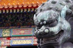 Лев сделанный от меди принятой перед запретным городом в Пекине, Китаем (оно немного влажный от дождя) стоковая фотография rf