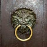 Лев knocker двери Стоковое фото RF