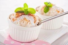 Легкий десерт - рис молока Стоковые Фотографии RF