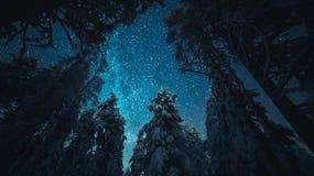 легко редактируйте изображение к зиме вектора валов Финляндия Стоковое фото RF