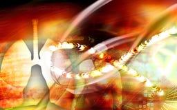 легкя Стоковые Изображения RF