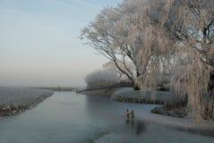 ледистая зима Стоковые Фотографии RF