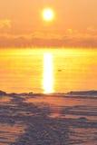 ледисто над заходом солнца моря стоковое изображение
