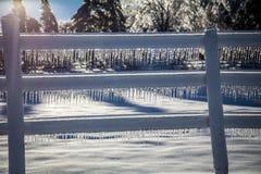 Ледистые ветви дерева и ледистый снеговик Стоковые Фотографии RF