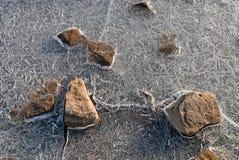 ледистые камушки Стоковые Изображения