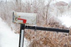 Ледистые braches дерева и ледистый почтовый ящик Стоковая Фотография