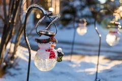 Ледистые braches дерева и ледистый снеговик Стоковые Фото