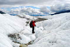 ледник Аляски стоковая фотография rf