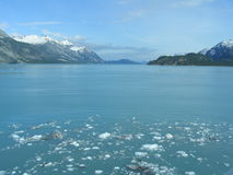 ледник залива Аляски стоковая фотография