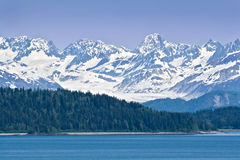 ледник залива Стоковая Фотография RF