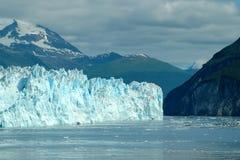 ледник залива Стоковое Изображение