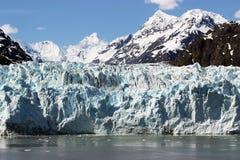 ледник залива Стоковое Изображение RF