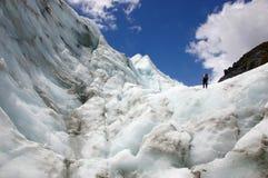 ледник лисицы альпиниста Стоковое Изображение RF
