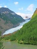 Ледник медведя - Stewart, BC зона Стоковое фото RF