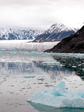 ледник фьорда залива Стоковые Изображения RF