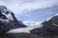 ледник athabasca Стоковые Фото