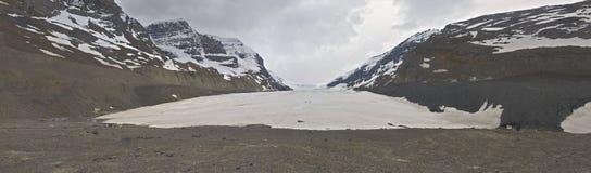 Ледник Athabasca стоковая фотография rf