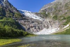 Ледник Boyabreen в национальном парке Jostedalsbreen стоковые фото