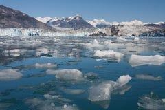 ледник columbia отела стоковые изображения rf