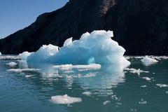 ледник columbia стоковое изображение