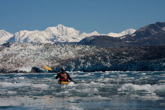 ледник columbia стоковые изображения