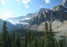 ледник crowfoot Стоковое Изображение RF