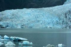Ледник Mehdenhal Стоковые Изображения RF