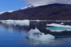 Ледник Steffen в поле льда Campo de Hielo Sur южном патагонском, чилийской Патагонии Стоковое Фото