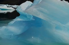 Ледник Steffen в поле льда Campo de Hielo Sur южном патагонском, чилийской Патагонии Стоковые Фото