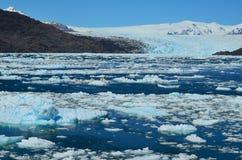 Ледник Steffen в поле льда Campo de Hielo Sur южном патагонском, чилийской Патагонии Стоковая Фотография RF