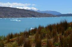 Ледник Steffen в поле льда Campo de Hielo Sur южном патагонском, чилийской Патагонии Стоковое фото RF