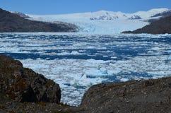 Ледник Steffen в поле льда Campo de Hielo Sur южном патагонском, чилийской Патагонии Стоковое Изображение RF