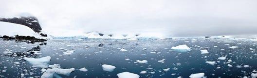 Ледник Tidewater, залив рая, Антарктида стоковое изображение