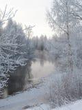 ледовитая зима стоковая фотография