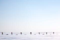 ледовитая экспедиция стоковая фотография