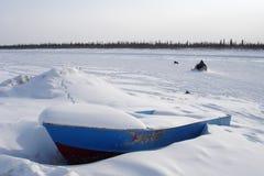 ледовитый голубой snowmobile собаки шлюпки Стоковое фото RF