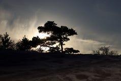 ледовитый Лапландии природы русский северно Заход солнца стоковое изображение rf