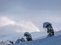 Ледяные изогнутые деревья на наклоне След лыжи идя к облаку в Карпат в Украине стоковые изображения rf
