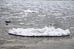 Лед блинчика на воде стоковое фото
