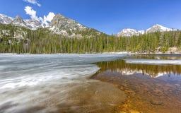 Лед и стекло озера папоротник стоковое изображение